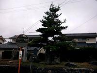 Cam_0016w200